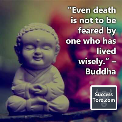 """""""Even death is not to be feared by one who has lived wisely."""" – Buddha"""
