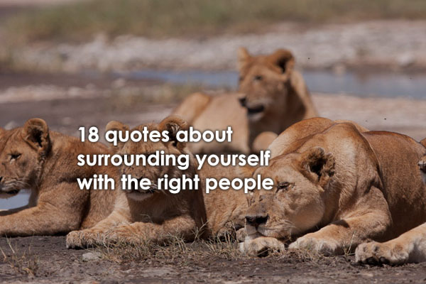 18 Powerful Surround Yourself With People Who Quotes