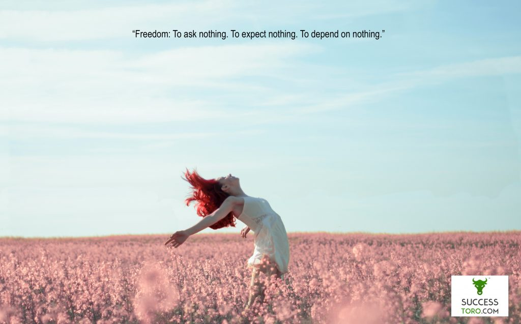 """Freedom: To ask nothing. To expect nothing. To depend on nothing."" Ayn Rand Quote"